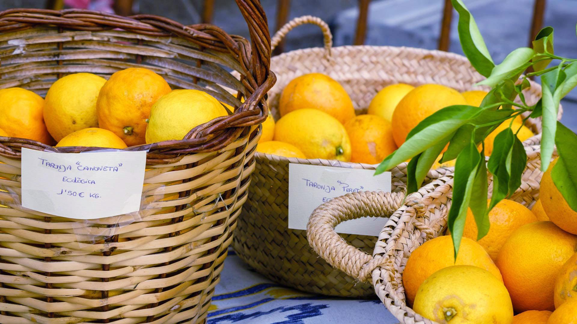 Imagen  Jornadas Gastronómicas de la Naranja de Sóller