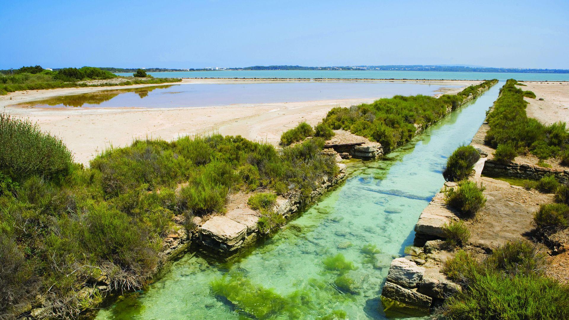 Imagen Área natural protegida Estany Pudent