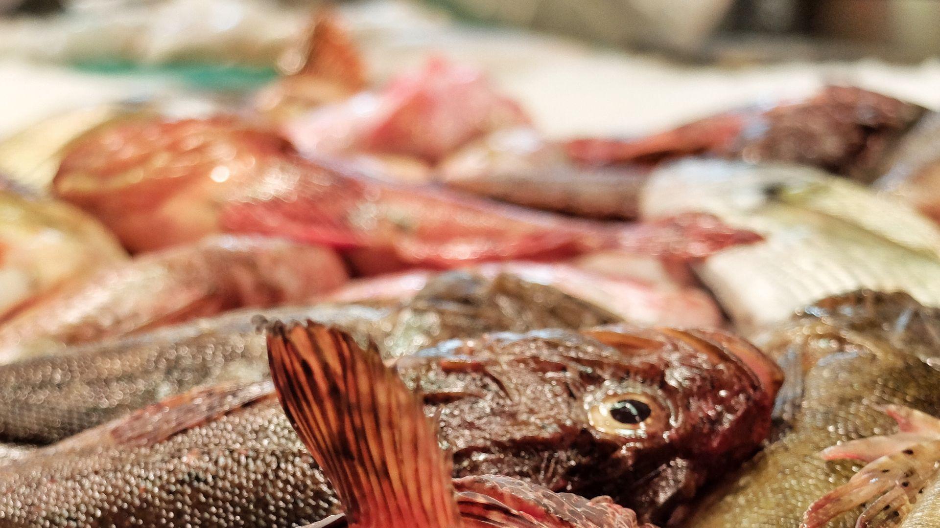 Imagen Gastronomic market Mercat de l'Olivar
